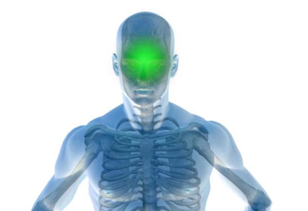 glowa-zielony