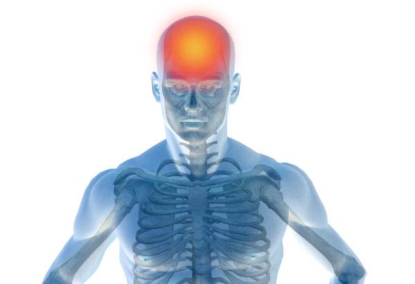mozg-pomarancz